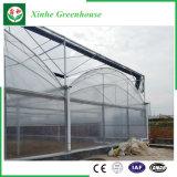Estufa plástica da agricultura de /Film para vegetais