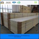 Painel de sala de armazenamento frio famoso produzido na China desde 1996