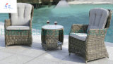Chair를 가진 Chair Table Wicker Furniture Rattan Furniture와 Table Furniture를 가진 고리 버들 세공 Sofa Outdoor Rattan Furniture