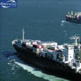 Containerschiff von Yantian/von Hong Kong/von Xiamen nach Tacoma/Vancouver/Chicago/Omaha/Cincinnati/Columbus/Detroit/Georgetown/Kansas City/Memphis/Norfolk