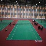 داخليّة/خارجيّة محترفة [بفك] كرة مضرب رياضة أرضيّة