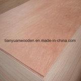 Madera contrachapada caliente del uso 4.5m m Bintangor de los muebles de Decoraion del embalaje de la venta de la fábrica de Linyi