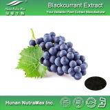 100%の自然なBlackcurrantのエキス(アントシアニジン5%~25%の4:1 ~20: 1)