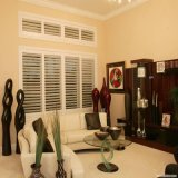 Obturateur élégant moderne de plantation élégante pour l'obturateur de fenêtre
