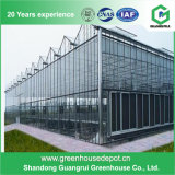 Estufa de vidro vegetal de venda quente do vidro coberto de casa verde