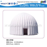 Inflatable esterno House Inflatable Castle Series per Kids (HD-9701)