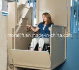 신체 장애자를 위한 수직 휠체어 플래트홈 상승