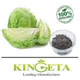 La agricultura fertilizantes orgánicos en polvo