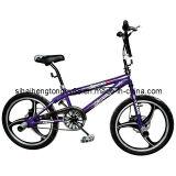 20дюйма BMX Freestyle велосипед в корпусе из магниевого сплава колесо (FB-010)