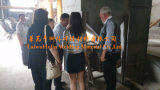 Chinesischer Fabrik-Lieferant des Schweißens-Fluss-Hj107