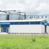 Weizen-Mehl, das Maschinen-/Weizen-Tausendstel für Weizen-Grieß/Semolino/Semola bildet