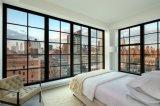 Estilo moderno Windows de acero francés hecho a mano