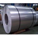 A cor principal de PPGI revestida Prepainted bobinas de aço galvanizadas de PPGI