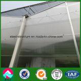 Invernadero del vidrio del Multi-Palmo del bajo costo del surtidor de China