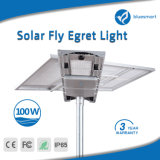 illuminazione esterna alimentata solare della via LED del giardino 100W