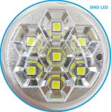 7PCS bulbo estupendo del blanco SMD LED