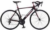 탄소 섬유 자전거 핸들을%s 가진 자전거를 경주하는 RC700sk806 700c 합금 프레임