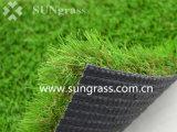 erba artificiale d'abbellimento di 50mm per ricreazione/svago con i sei toni (SUNQ-HY00172-1)