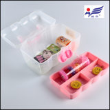 Миниая резцовая коробка PP пластмассы с пластичной ручкой (HYS-019)