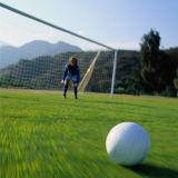 安のサッカー競技場の人工的な草