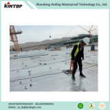 L'imperméabilisation auto-adhésif de membrane de bitume de protéger les matériaux de construction