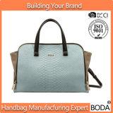 Donne bollate d'imitazione del fornitore della Cina borse (BDX-171118)