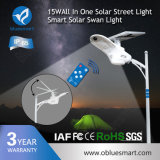 Lumière solaire Integrated de jardin du lumen élevé facile DEL d'installation