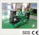 Planta de energía de biogás Setwith generador de la ISO (50kw).