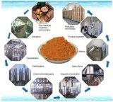 Lino Lignans 20% dell'estratto del lino