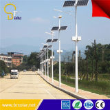China Top Pure White 15W a 120W Wind Solar Hybrid Street Lights