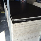 Compensato rivestito della mobilia del compensato 17mm 18mm di memoria del legno duro del pioppo della melammina di O/L B/L
