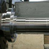Linea di produzione di legno della pallina tonnellata di 6-7