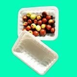 Home e exibição de bandeja de comida de plástico PP com/sem almofada de absorção