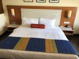 호텔 가구 또는 호텔 침실 가구 또는 파이브 스타 호텔 침실 가구 또는 호텔 특대 침실 가구 또는 중국 Foshan 호텔 가구 (BIH--002)