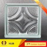 Кирпич здания стеклянный полый стеклянный (LPH08)