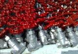 Aço inoxidável 304/316 de válvula de porta da linha 1.0MPa fêmea
