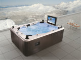 텔레비젼 (M-3342)를 가진 Monalisa High End Hydrotherapy Massage SPA