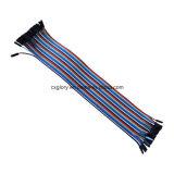 40 pinos Fêmea para fêmea 2,54 mm Pitch Ribbon Cable