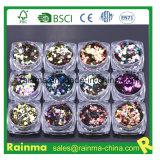 Pó holográfico do Glitter do animal de estimação da prata cosmética da classe