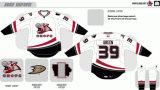 Настроенные Мужчины Женщины дети американской хоккейной лиги штата Айова отбивные 2008-2009 Хоккей Джерси