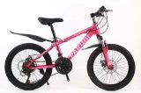 Ventes en gros prix bon marché 26 pouces Vélo enfant Vélo Vélo de montagne de l'usine