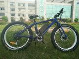 إطار العجلة كهربائيّة كبيرة يتسابق درّاجة مع [ليثيوم بتّري]