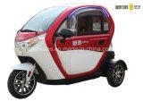 3-Wheel Electric Mini Voiture Voiture électrique intelligent de voisinage