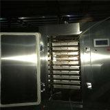 Una máquina de Ajo Negro Low-Energy
