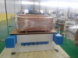 Gravador 1325 da máquina 3D do Woodworking do CNC
