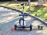 3 scooter sans frottoir électrique de siège d'enfant de moteur du scooter 500W de roue