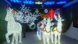 クリスマスMasの馬キャリッジ主題ライトショーのための装飾的なモチーフライト