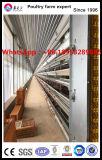 장비를 가진 Prefabricated 가벼운 강철 구조물 닭장