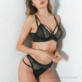 Dessus 2017 vendant la lingerie de classique de dames