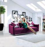 Stilvolle Hauptmöbel - Sofa-Bett